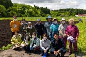 青森県十和田市の伝統工芸品「きみがらスリッパ」の原材料デントコーンの種まき作業