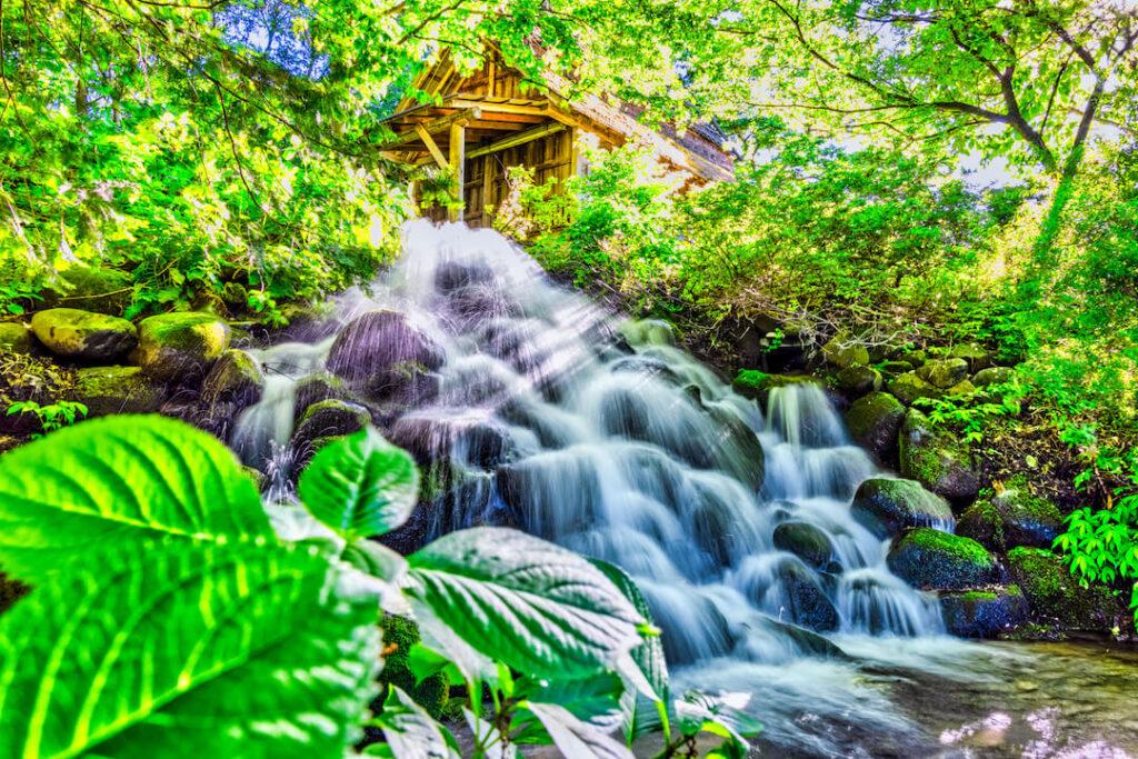 手作り村鯉艸郷_滝